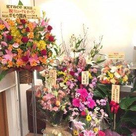 夙川店リニューアルオープン!!